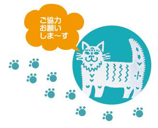 bokin_cat